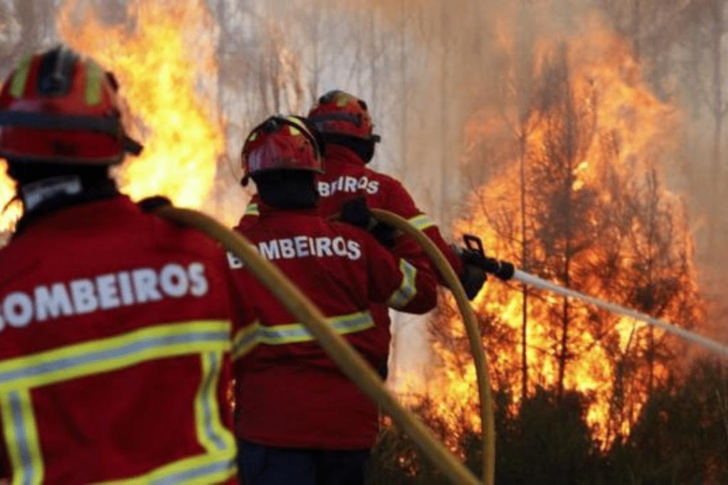 Mangueira de Incêndio e sua importância